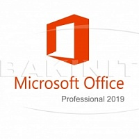 Microsoft Office Professional 2019 (269-17064)
